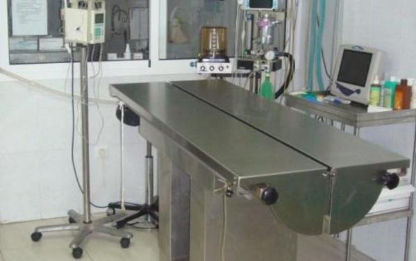 Servicios: Productos y Servicios de Clínica Veterinaria Vilanova
