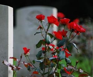Trámites funerarios