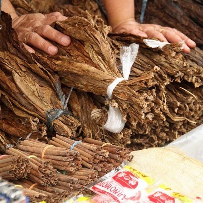 La hoja de tabaco