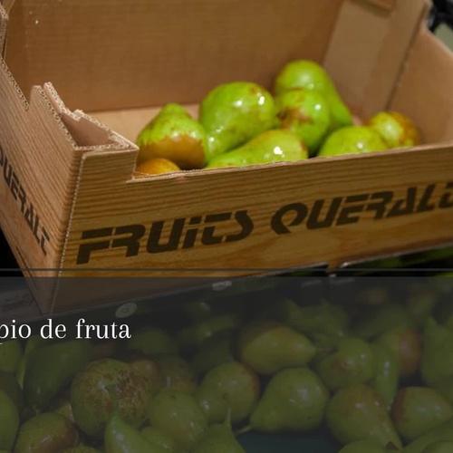 Distribuidor de frutas a nivel nacional e internacional | Fruits Queralt
