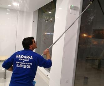 Pintura: Servicios de Limpiezas Hadassa