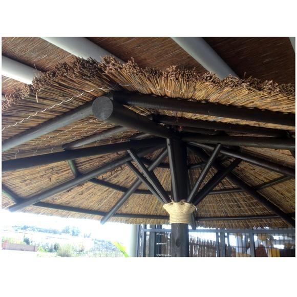 Sombrilla de junco africano