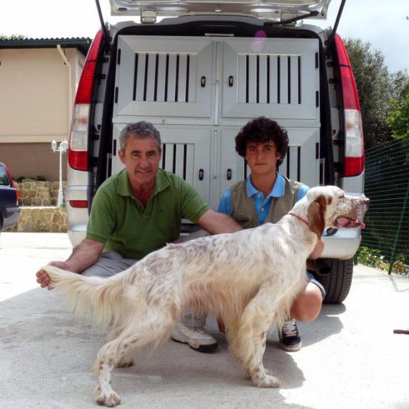 Tarifas (especial cazadores): Servicios de Errekagane Residencia Canina