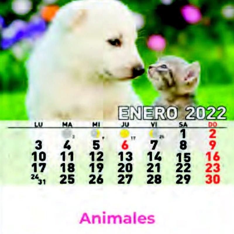 Cd ref 33 - Animales: Nuestros Productos de Gráficas Kalendex