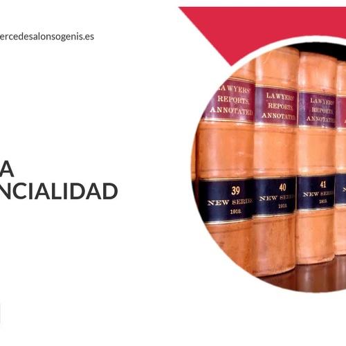 Bufete de abogados en Zaragoza | Alonso-Genis, M.