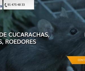 Control de plagas en Madrid centro | Tresdes