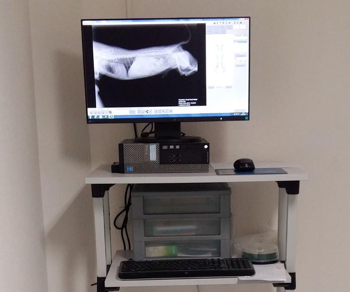 Servicio de radiología digital