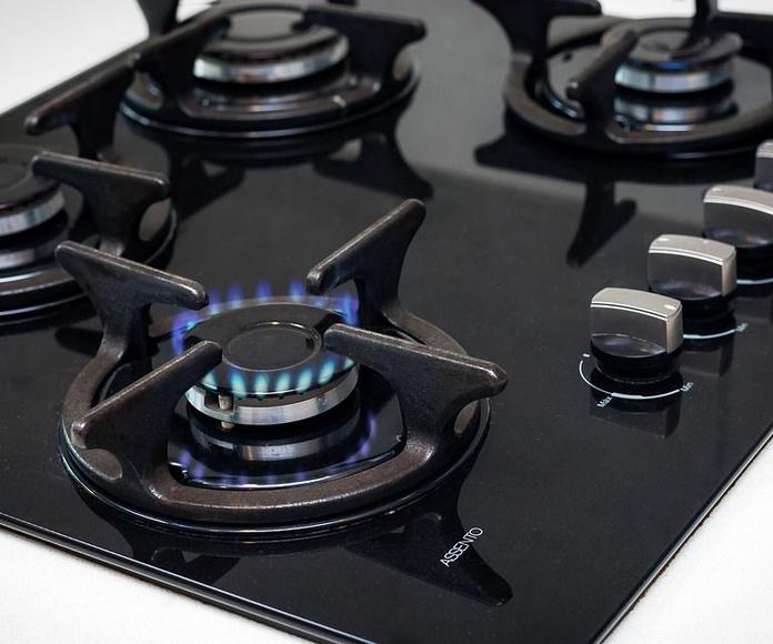 Gas: Servicios de Fontalena