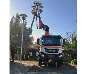 Camiones grúas en Mallorca