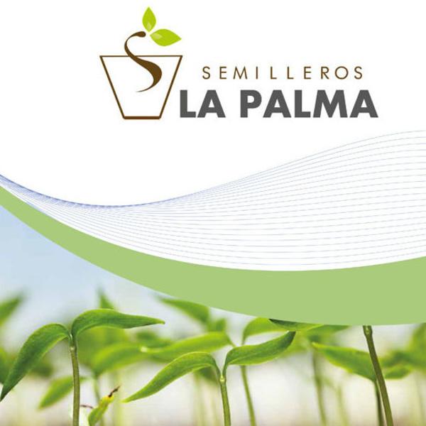 Catálogo de productos hortícolas: Productos de Garden La Palma