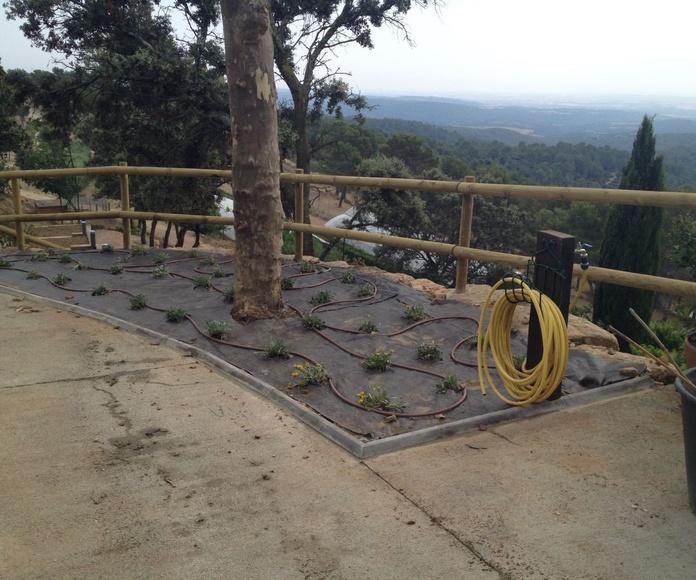 Proyectos de jardinería: Catálogo de Mercajardí