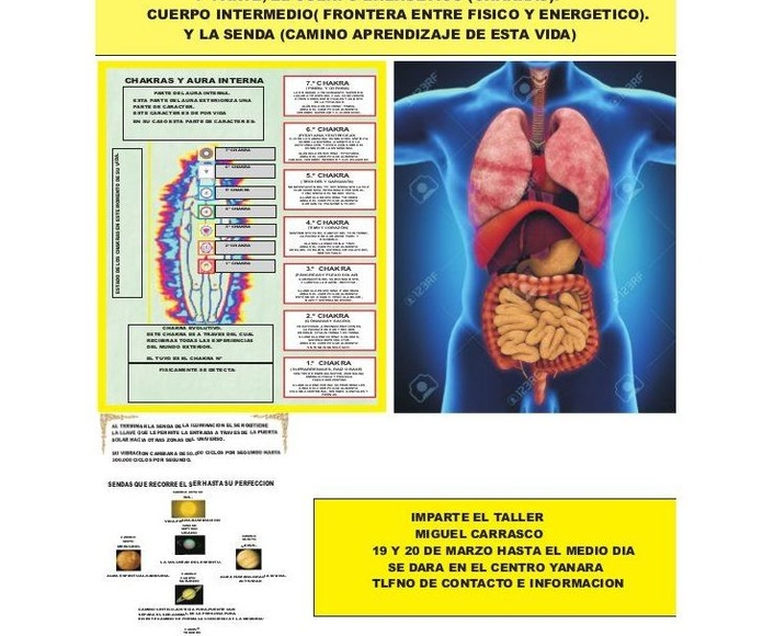 Taller de medicinas alternativas