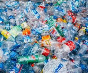 Recogida y venta de plásticos