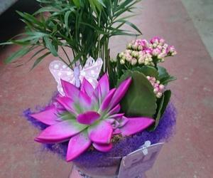 Original centro de flores naturales