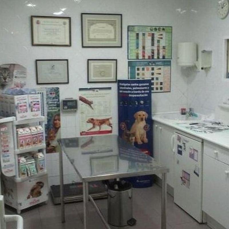 Consulta: Productos y Servicios de Clínica Veterinaria Centro