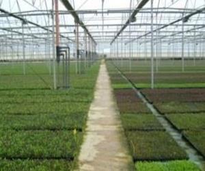 SOB Distribuidores, S.L. ofrecemos un sistema único en el mantenimiento del agua en Murcia