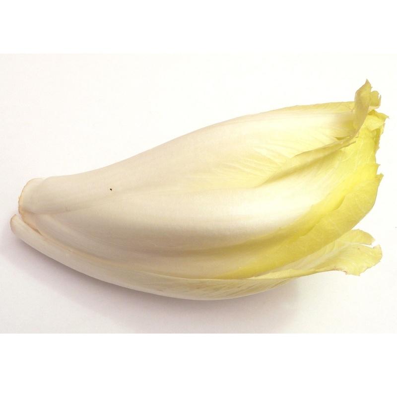 Endibia blanca: Productos de Mundifruit