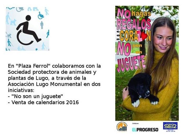 """Campaña """"no son un juguete"""" de la protectora de animales de Lugo"""