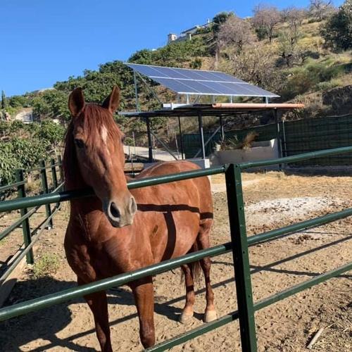 Energía solar Málaga
