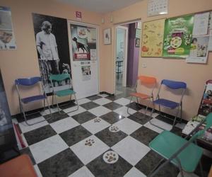 Clínica veterinaria en Córdoba