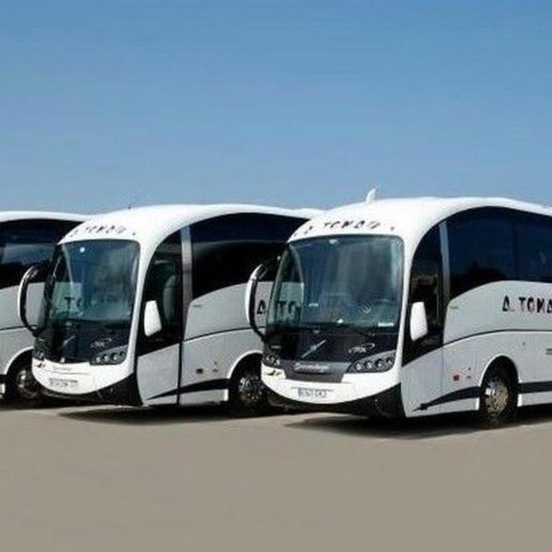 Alquiler: Servicios de Autobuses A. Tomás