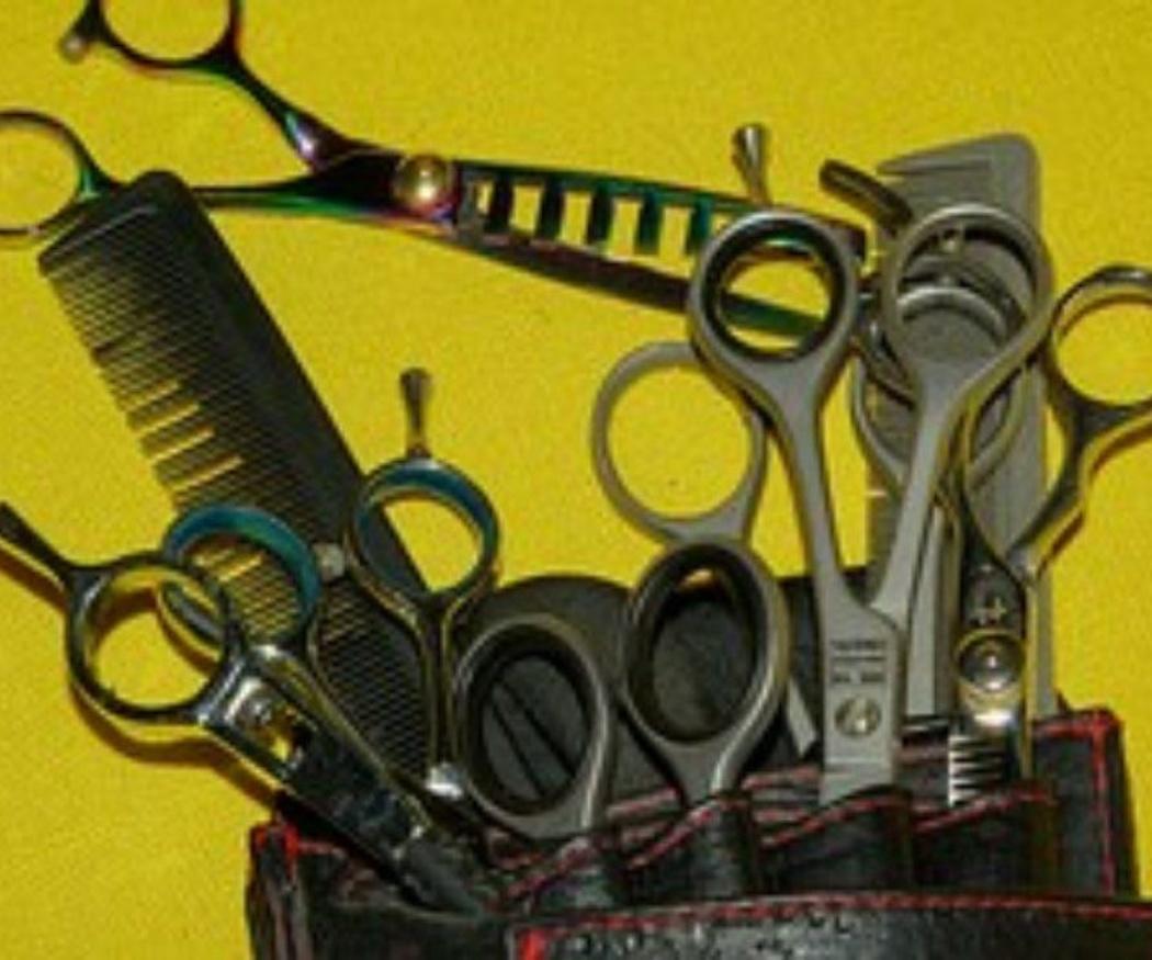¿Qué tipo de tijeras necesitas?