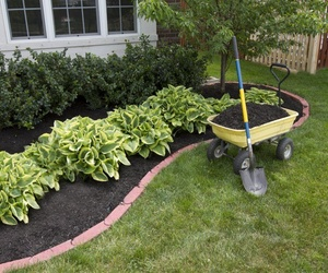 Construcción de jardínes