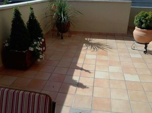 Fotos de Floristerías en Fraga   Floristería Decoflor