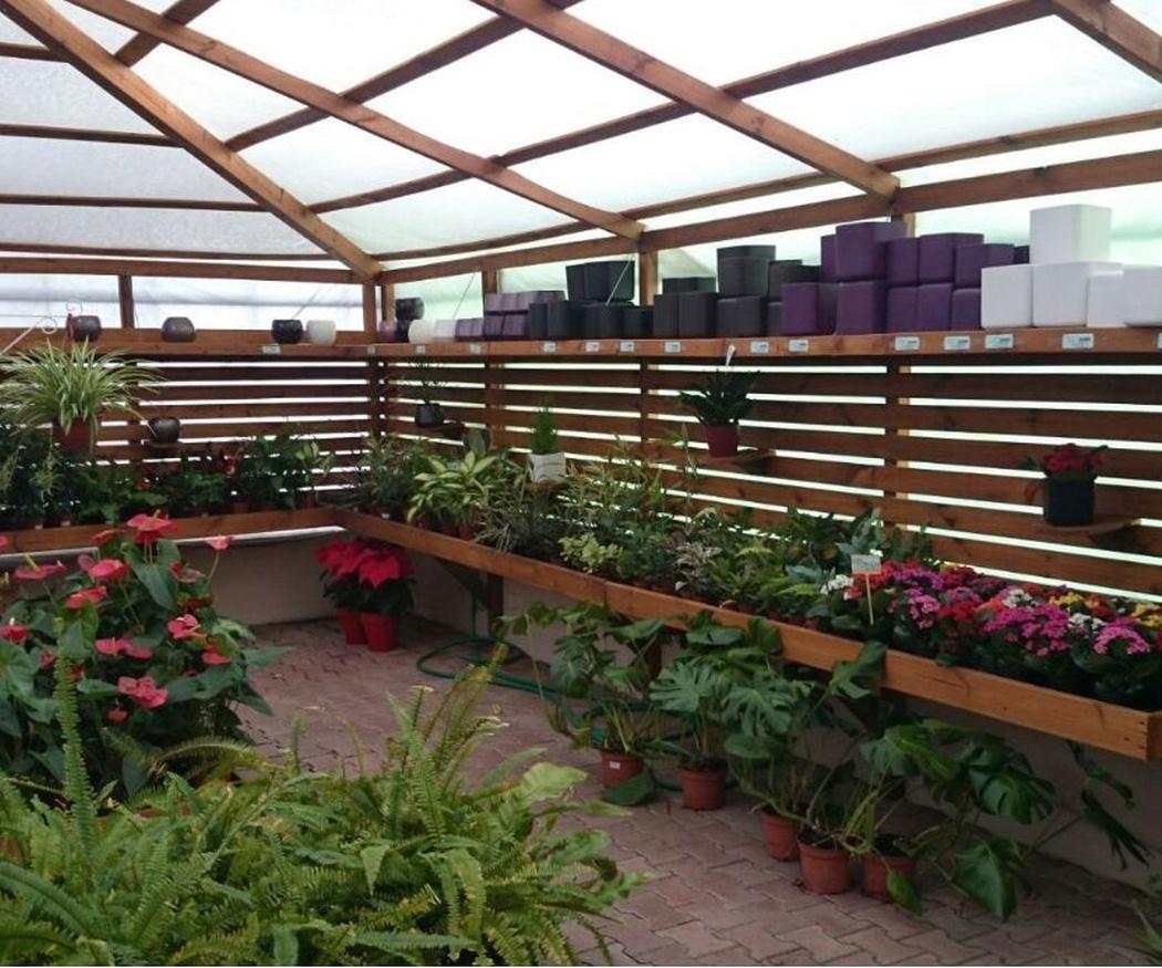 Jardinería personalizada a cada tipo de terreno