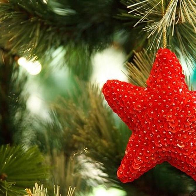 ¿Cómo decorar el árbol de Navidad?