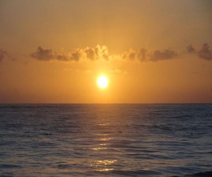 Celebremos San Juan, renovando lo que somos, espíritus divinos