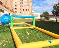 acuatico volley