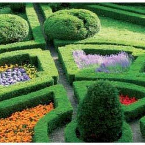 Mantenimiento de jardines en Coslada | Xana