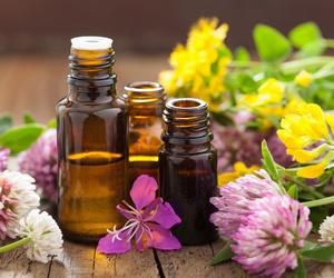 Tratamientos curativos con plantas