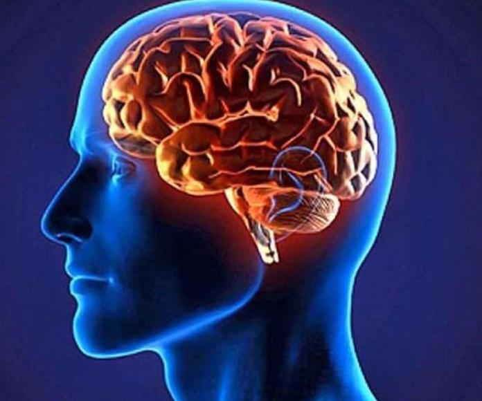 Psicologia clínica Murcia, psicóloga Murcia, Síndrome Tourette