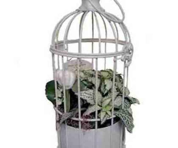 Jaula primavera: Catálogo de Regalos de Floresdalia.com