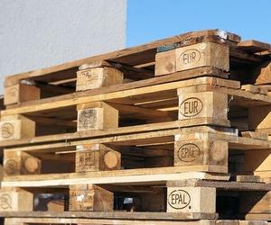 Todos los productos y servicios de Palets usados: Carcosa Reciclajes