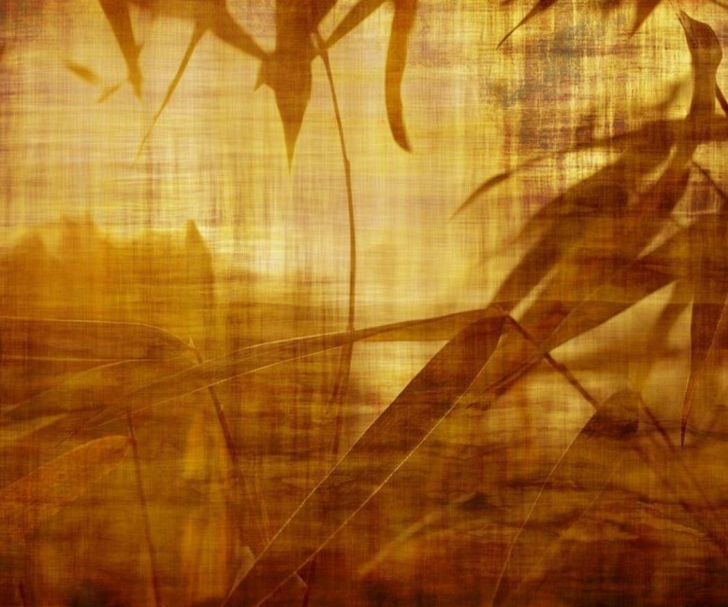 ¿Sabes qué es el papel bambú?