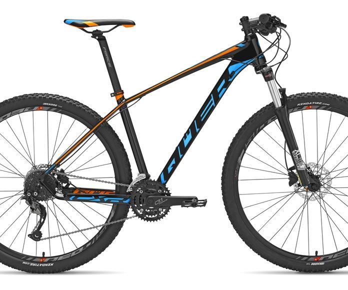 CXR 29 5: Productos de Ciclos Queralt