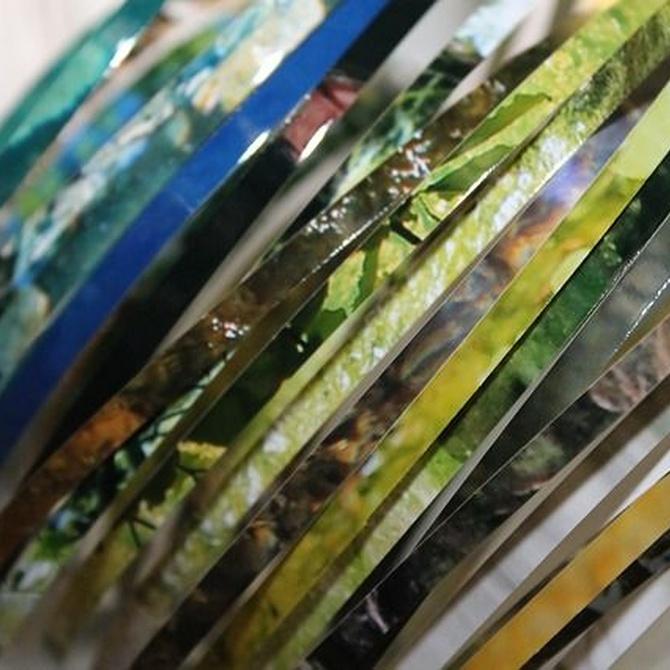El papel reciclado como materia artística
