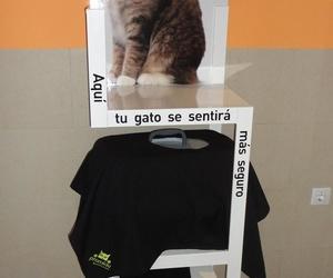 Estante espera segura gatos