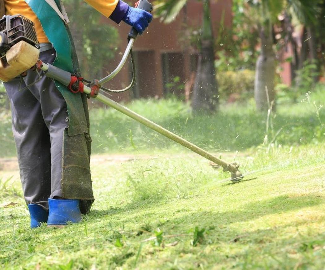 Tres pautas muy importantes en el mantenimiento de jardines