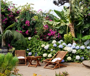 Naturaleza, Relax y Disfruta!