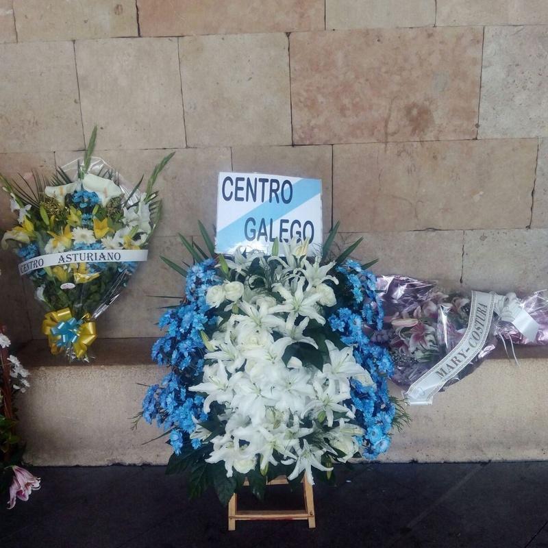 Centros de Flores: Productos de Floristería Pothos