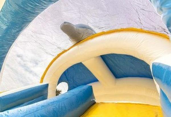 tobogán delfin con techo