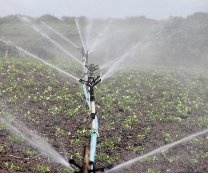 Venta e instalación de sistemas de riego: Servicios de Rafael Parra Magro Riegos y Servicios