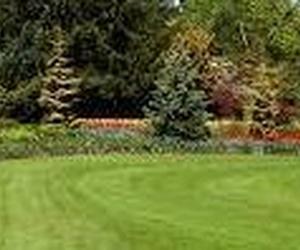 Proyectos y mantenimiento de jardines