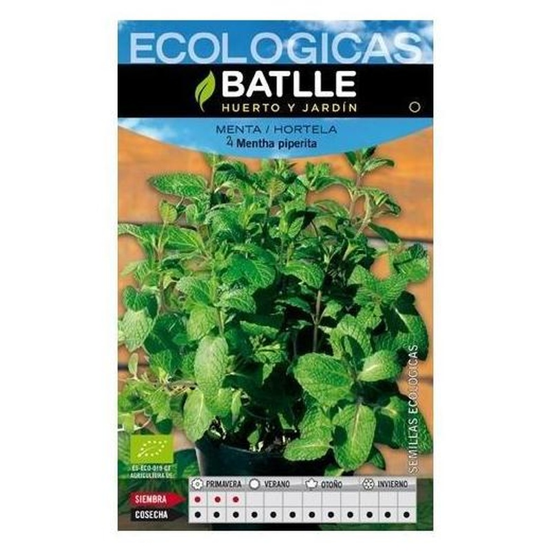 Semillas ecológicas de Menta Piperita Ref. 40