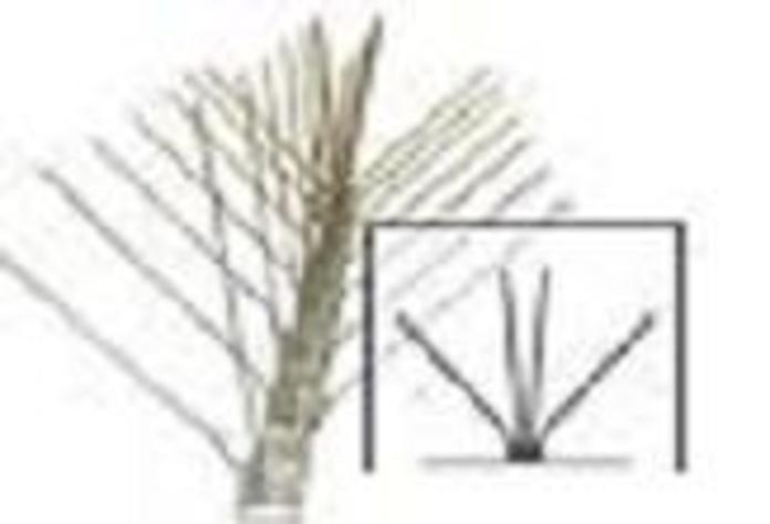 Pinchos antiaves: TRABAJOS de M. Del Monte Canalones