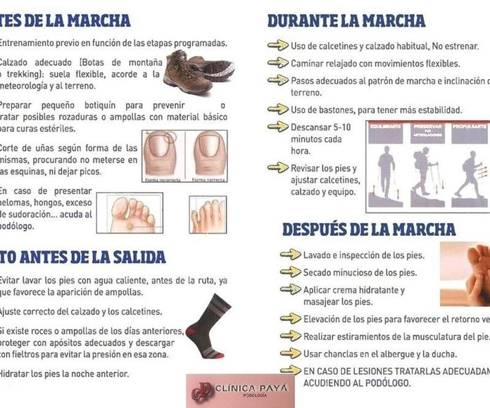 Consejos Podológicos: Camino de Santiago, Romerías y Senderismo
